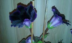 Gloksynia,kwitnie mi od czerwca do tej pory. Cebulki do doniczki wsadziłam w marcu.