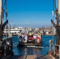 Explore Chappaquiddick | The Chappy Ferry Martha's Vineyard