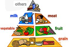 The Food Pyramid should be your guide to healthy eating.