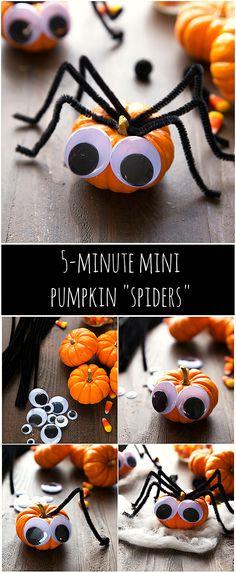 Super cheap and quick Halloween decoration - 5 minute mini pumpkin spiders