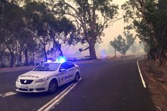 Bushfire close to Lobethal-Gumeracha road in the Adelaide Hills. (ABC News: Tom Fedorowytsch)