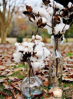 Cotton Branches in vintage jars glass jars