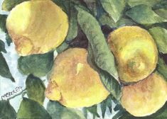 ACEO Original Lemon Tree fruit citrus gardening farming orchard food sour ripen #Impressionism
