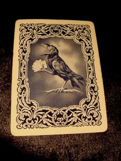 Old Raven, Rook, Crow Cards, priced each