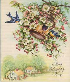 Vintage Bluejay Birds Letter Carrier Apple Blossoms Birch Trees House Card Print