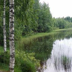 Good morning ☺ #matkalla #onmyway #travelling #ontheroadagain #suomenkesä #summerinfinland #instasummer #instafinland #igfinland #maisema #landscape #luonto #nature #instanature #naturelovers #ignature #suomi #finland #lifestyle #blogger #nelkytplusblogit #thisisfinland #ig_finland www.ladyofthemess.fi