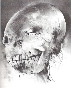 Stephen Gammell skull remember these pictures from Scary Stories to Tell in the Dark ??