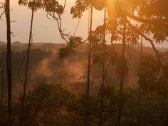 20 Stunning Views From Latin America's Jungles