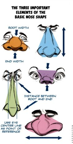Important nose shape Drawing Cartoon Faces, Nose Drawing, Cartoon Sketches, Cartoon Art Styles, Drawing Hair, Gesture Drawing, Art Sketches, Character Sketches, Character Design References