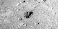 Kiwis on Mars! This shot was taken by the Nasa rover, Curiosity #Mars #space #Humour #humor