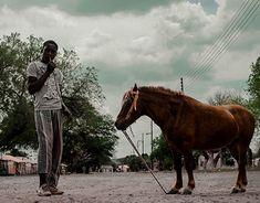 Boy with the Pony Digital Photography, New Work, Pony, Street Art, Behance, Horses, Gallery, Check, Animals