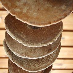 Turkansaari on tunnelmallinen juhlapaikka pienimuotoisille perhejuhlille, kuten häille, ristiäisille, rippijuhlille ja syntymäpäiville. Nämä leivät ovat hääparien leipomia.  Oulu (Finland)