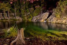 La belleza transformada en naturaleza
