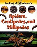 Spiders, Centipedes, and Millipedes (Looking at Minibeasts)  This series examines the lives of minibeasts in detail, from eggs and larvae to fully grown adults, through the use of clear photographs. Instructions on how to create a habitat for minibeasts are included. This title examines spiders, centipedes and millipedes. 📚 #Children #Children_Book #Kid_Book