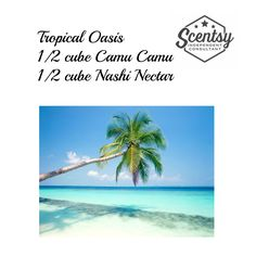 Tropical Oasis Scentsy Recipe