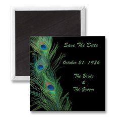 Green Feathers with Black Wedding Save the Date Magnet by Peacocks