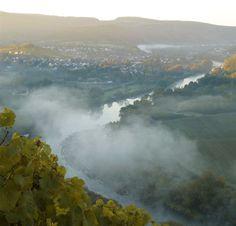 Wiltingen im Nebel