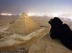 Fotografías tomadas ilegalmente de monumentos famosos que te quitarán el hipo