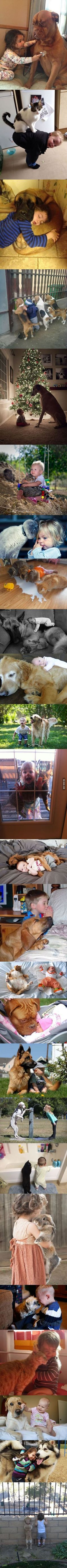 Ist dass nicht süß,wie die Kinder und die süßen Tierchen miteinander umgehen ?