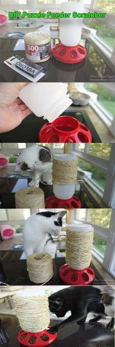 DIY Puzzle Feeder & Scratcher for Cats #PAW2014  #cats