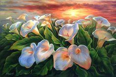 """Douglas Frasquetti """" Callas """" Óleo sobre tela 60 x 90 cm Julho 2015 À VENDA ! Aulas de pintura em tela, tecido e madeira, workshop e venda de obras."""