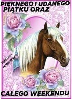 Horses, Animals, Polish, Photo Illustration, Animales, Animaux, Horse, Animal Memes, Animal