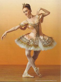 ballet costume- would be great for my porcelain doll costume if I could actually get my hands on it!