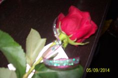 a rose for mother