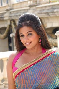 Indian Beauty in a Saree