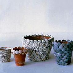 Shell covered flower pots! Always trying to find new ways to use all the shells I have collected over the years.