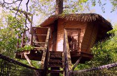 Cabane zen – Cabane dans les arbres insolite à Pons