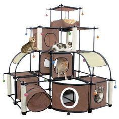 Kitty City Sleepy Corner Keeps Your Pet Relaxed