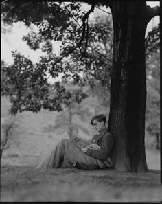 colin-wilson-reading-by-tree-1956