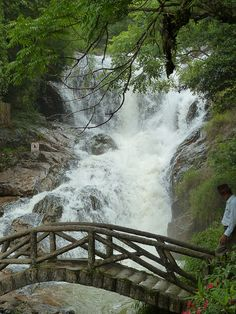 Waterfall in Dalat, Vietnam Dalat Vietnam, Spin, Travelling, This Is Us, Waterfall, To Go, Couple, Places, Nature