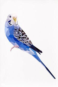 Geometric illustration Blue Budgie Bird print by TinyKiwiCreations