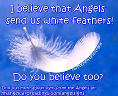 """⭐  ⭐ For 15 Signs your Angels are with you CLICK HERE ➡   ⭐ http://www.myangelcardreadings.com/angelsigns ⭐     ⭐  AND we have 10 pages full of """"Angel Signs"""" image quotes. To find them CLICK HERE ➡  ⭐  http://www.myangelcardreadings.com/angelsigns2  ⭐   ⭐  ⭐  ⭐  ⭐  ⭐  ⭐  ⭐  ⭐  ⭐  ⭐  ⭐    #angelsigns #angels"""