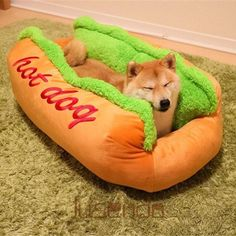 We can only assume that your dogs like-long goal is to become a hot dog. Now he can do just that with this funny hot dog dog bed. It's shaped like a hot dog bun, and once your dog hops inside, he beco. Cute Funny Animals, Funny Animal Pictures, Funny Cute, Funny Dogs, Funny Dog Beds, Random Pictures, Funny Animal Faces, Animal Pics, Super Funny