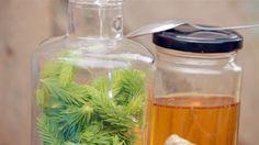 Tinktura zmladých smrkových výhonků — Recepty — Kouzelné bylinky — Česká televize Water Bottle, Food, Syrup, Health, Essen, Water Bottles, Yemek, Meals