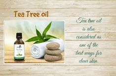 how to get clear skin - tea tree oil