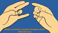 Mudra na trávení Funny Slogans, Nordic Interior, Practical Gifts, Reflexology, Sports Equipment, How To Look Pretty, Memes, Ds, Health