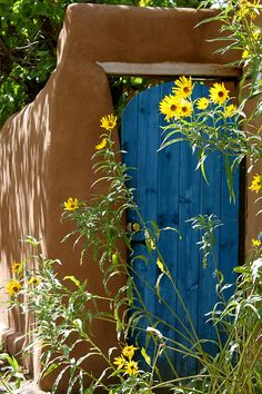 Perfect NM style door to a courtyard