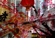 Hong Kong: Decoration for the Lunar New Year of the Snake