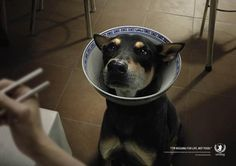Brilliant Ads Shed Light On The Dog Meat Trade In Thailand