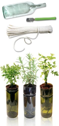 Cut wine bottles for planting herbs. Use any type of screen (window) and cut a little hole in the center for the cotton rope to go thru.The rope needs to hit the bottom. Tie a knot to secure it. Insert your screen piece inside the inverted top.Plant your favorite herb and fill up the bottom with water. It will sip the water thru the rope.