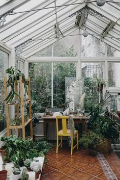 In the greenhouse. From the book House of Plants by Caro Langton and Rose Ray. Photography by Erika Raxworthy.