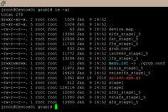 Linux boot loader