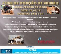 Bonde da Bardot: RJ: ADOÇÃO DE ANIMAIS NO PARCÃO DA LAGOA, NESTE DO...