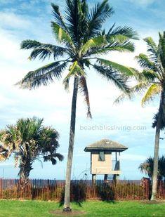 My Delray Beach Florida Vacation - Beach Bliss Living Delray Beach Florida, Destin Beach, Florida Beaches, Beach Trip, Miami Beach, Beach Travel, Beach Bum, Vacation List, Florida Vacation