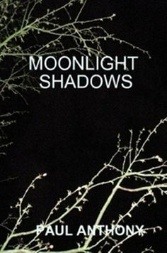 Paul Anthony : Moonlight Shadows: A high speed international chase thriller Books To Read, My Books, New Readers, Crime Fiction, Mystery Thriller, True Crime, Ebook Pdf, Short Stories, Moonlight