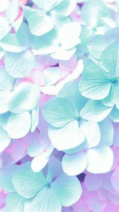 Flowery Wallpaper, Flower Phone Wallpaper, Retro Wallpaper, Pastel Wallpaper, Beautiful Flowers Wallpapers, Pretty Wallpapers, Flower Backgrounds, Wallpaper Backgrounds, Pretty Backgrounds
